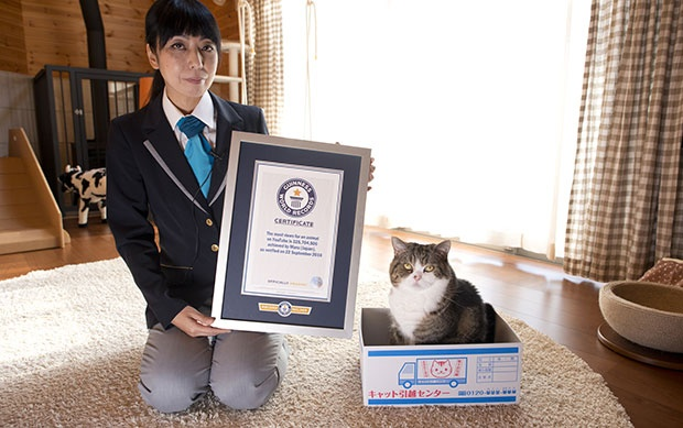 Фото Guinness World Records